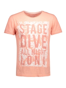 1035016.62.12 tom tailor t-shirt 5679