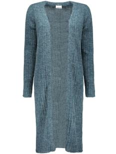 nmsnow l/s long knit cardigan 10162369 noisy may vest reflecting pond