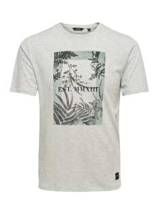 Only & Sons T-shirt onsSKYLAR SS TEE 22009300 White Melange