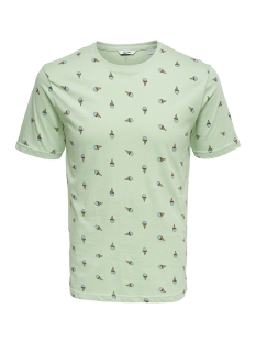 Only & Sons T-shirt onsDOMINGO SS AOP TEE 22010561 Smoke Green
