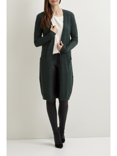 viril l/s long knit cardigan-noos 14042770 vila vest pine grove