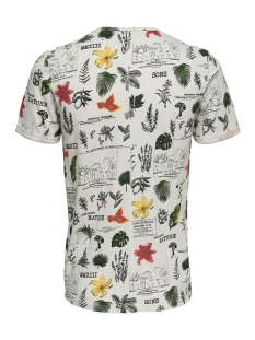 onsnew dimas fitted ss tee 22012732 only & sons t-shirt cloud dancer
