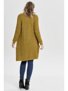 onlbernice l/s cardigan knt noos 15165076 only vest golden glow/w. melange
