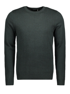 Jack & Jones Trui JPRAIDEN KNIT CREW NECK 12117129 Scarab/With Black