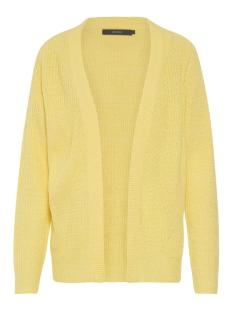 vmtida ls open cardigan e 10208522 vero moda vest yarrow/w. mellow