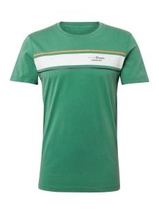 Tom Tailor T-shirt T SHIRT MET WASSING EN PRINT 1010035XX12 12294