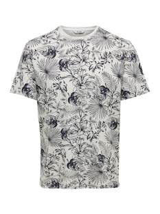 Only & Sons T-shirt onsEMIL SLUB AOP REG TEE SS 22012258 White Melange