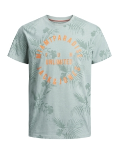 Jack & Jones T-shirt JORFUN TEE SS CREW NECK 12147404 Green Bay/SLIM