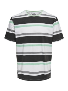 Only & Sons T-shirt onsLEX SS REG STRIPED TEE 22012625 White/NAVY/GREY/GREEN