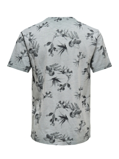 onslance ss reg aop washed tee 22012624 only & sons t-shirt griffin