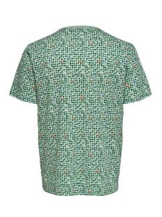 onstrey reg ss aop tee 22015169 only & sons t-shirt bosphorus