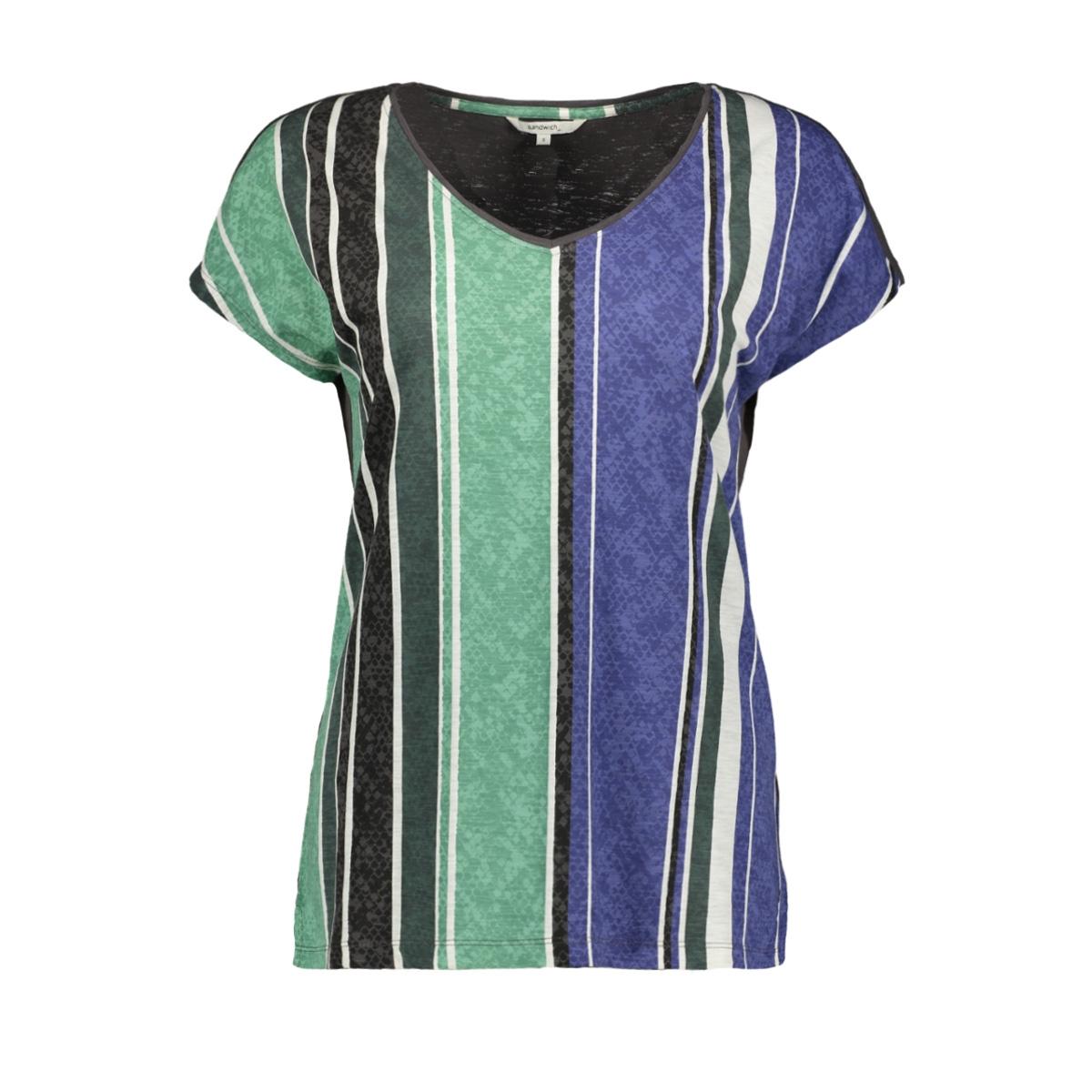 t shirt met strepen en slangen print 21101729 sandwich t-shirt 80025
