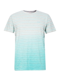 Esprit T-shirt JERSEY SHIRT MET KLEURVERLOOP 059EE2K011 E390