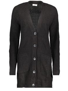 Jacqueline de Yong Vest JDYPEGGY TREATS L/S CARDIGAN KNT 15176696 Black