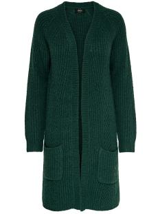 Only Vest ONLBERNICE L/S CARDIGAN KNT NOOS 15165076 Green Gables/BLACK MELA