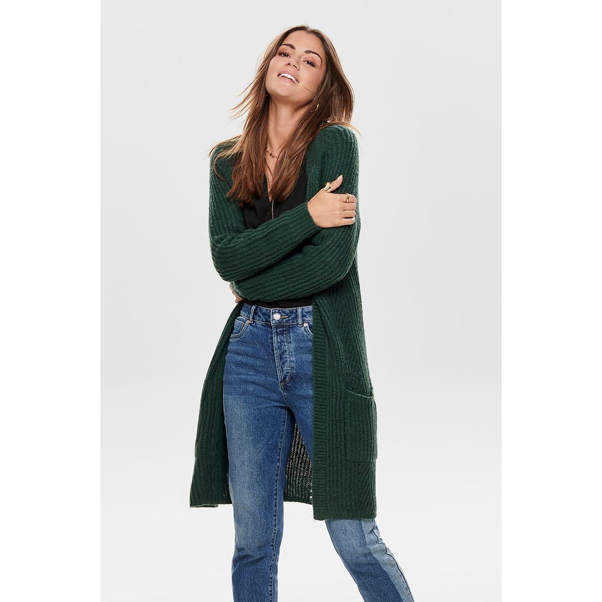 onlbernice l/s cardigan knt noos 15165076 only vest green gables/black mela