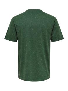 onsangeol ss aop tee 22014603 only & sons t-shirt trekking green