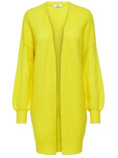 Jacqueline de Yong Vest JDYFAVORITE L/S CARDIGAN DENIM KNT 15196957 Neon Yellow