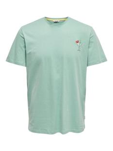 Only & Sons T-shirt ONSKOBI REG SS TEE 22016072 Aquifer