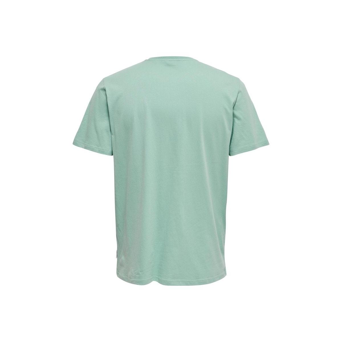 onskobi reg ss tee 22016072 only & sons t-shirt aquifer