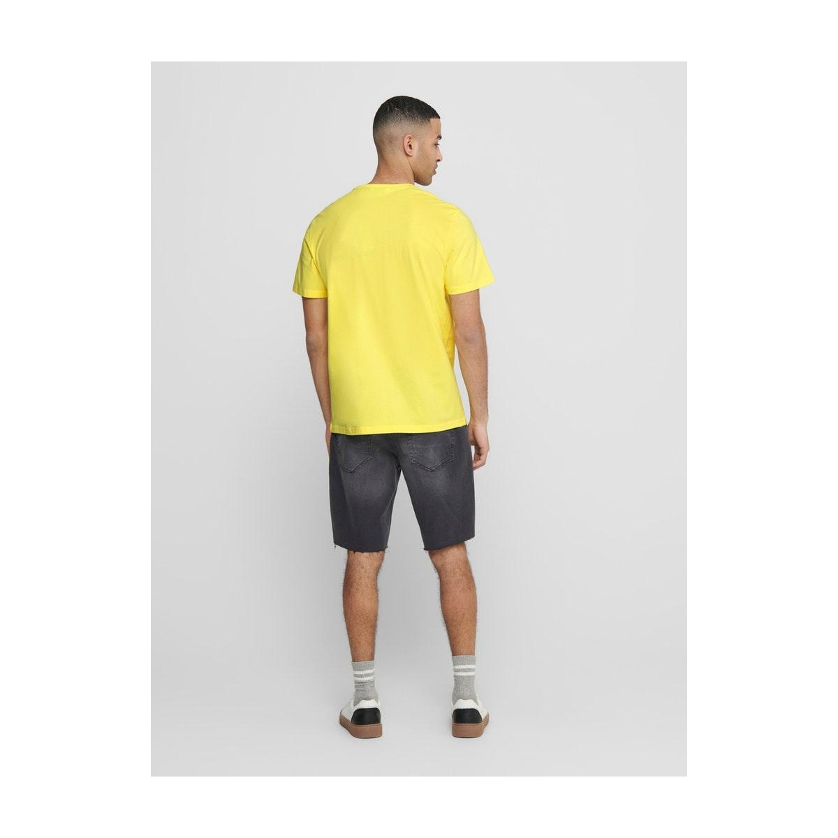 onskobi reg ss tee 22016072 only & sons t-shirt limelight