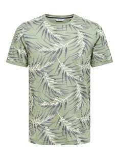 onsiason slim ss aop tee noos 22016762 only & sons t-shirt seagrass