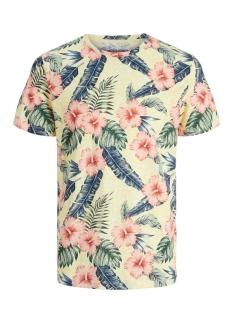 Jack & Jones T-shirt JORELI ORGANIC AOP TEE SS CREW NECK 12172036 Flan/SLIM