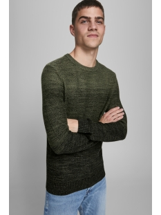 Jack & Jones Trui JJEGRAHAM KNIT CREW NECK NOOS 12173972 Olive Night
