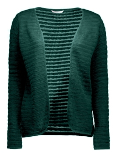 Only Vest onlCRYSTAL LS CARDIGAN NOOS 15116277 Pine Grove
