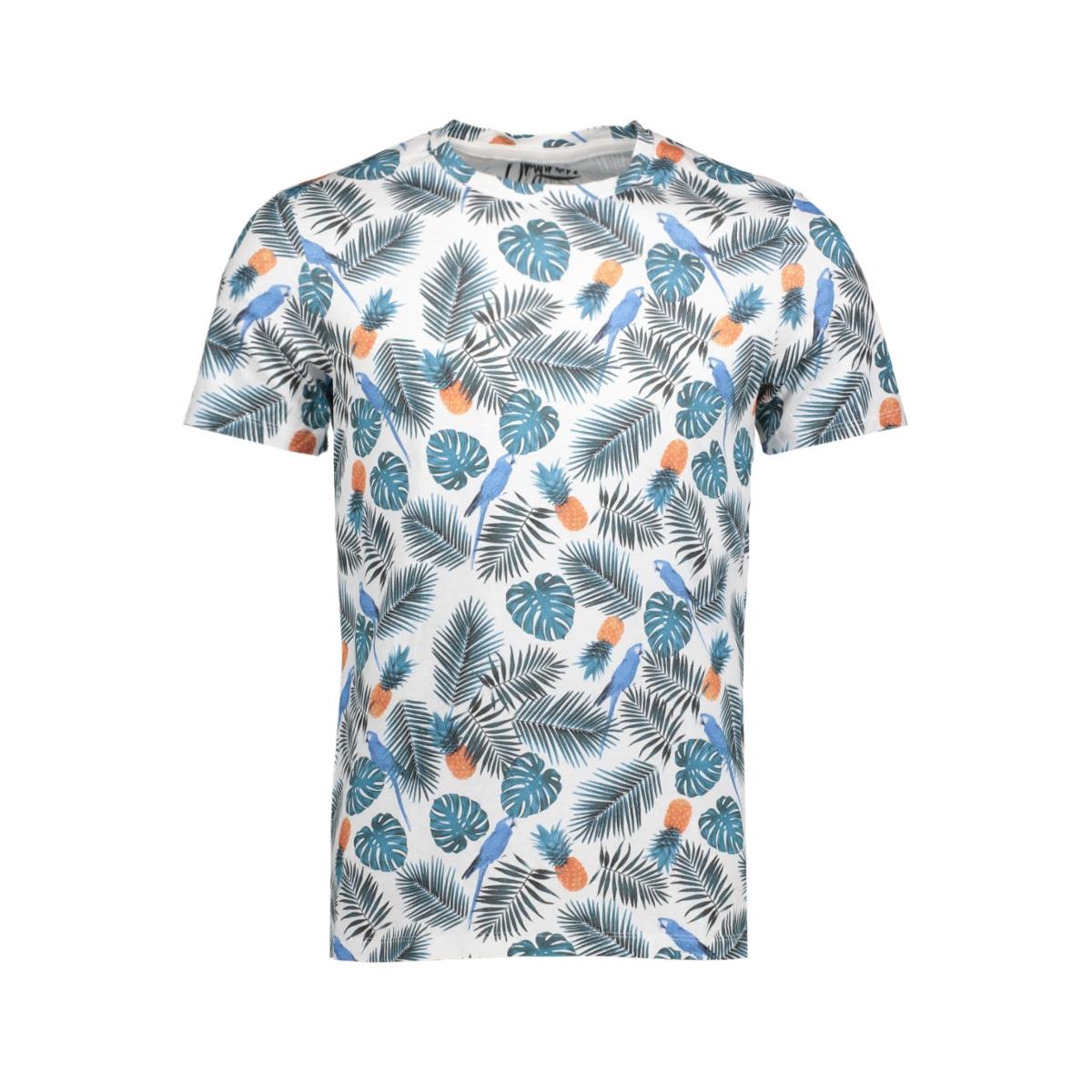 jorbotanique aop tee ss crew neck 12137048 jack & jones t-shirt cloud dancer
