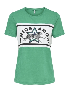 Only T-shirt onlADIOS S/S TOP JRS 15176585 Simply Green/CHEETAH