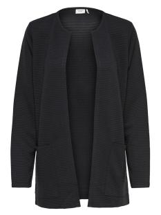 Jacqueline de Yong Vest JDYSAGA L/S CARDIGAN JRS NOOS 15154600 Black