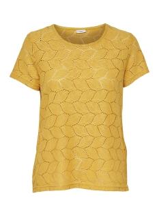 Jacqueline de Yong T-shirt JDYTAG S/S LACE TOP JRS RPT2 NOOS 15152331 Green Sheen