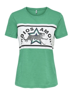 Only T-shirt ONLADIOS S/S TOP JRS 15176585 Jolly Green