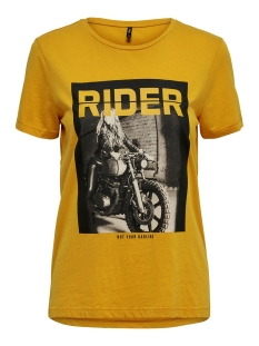 Only T-shirt ONLVIVIAN REG S/S TOP BOX ACID CO JRS 15183271 Autumn Blaze/RIDER