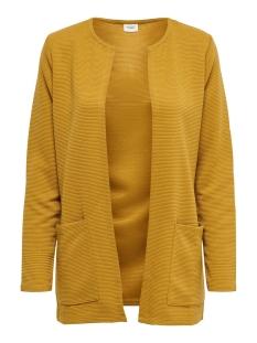 Jacqueline de Yong Vest JDYSAGA L/S CARDIGAN JRS NOOS 15154600 Harvest Gold