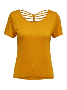 Only T-shirt ONLCARRIE S/S TOP JRS 15180201 Autumn Blaze