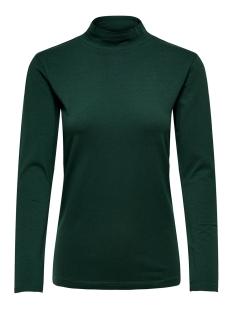 Jacqueline de Yong T-shirt JDYAVA L/S TURTLENECK TOP JRS NOOS 15165633 Scarab