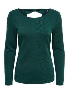 Only T-shirt ONLJACKIE L/S DETAIL TOP JRS 15191262 Ponderosa Pine