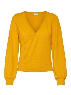 Jacqueline de Yong T-shirt JDYOSLO L/S TOP JRS 15197767 Mango Mojito