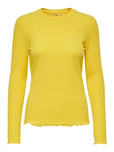 Only T-shirt ONLNELLA L/S O-NECK TOP JRS 15199971 PINEAPPLE SLICE