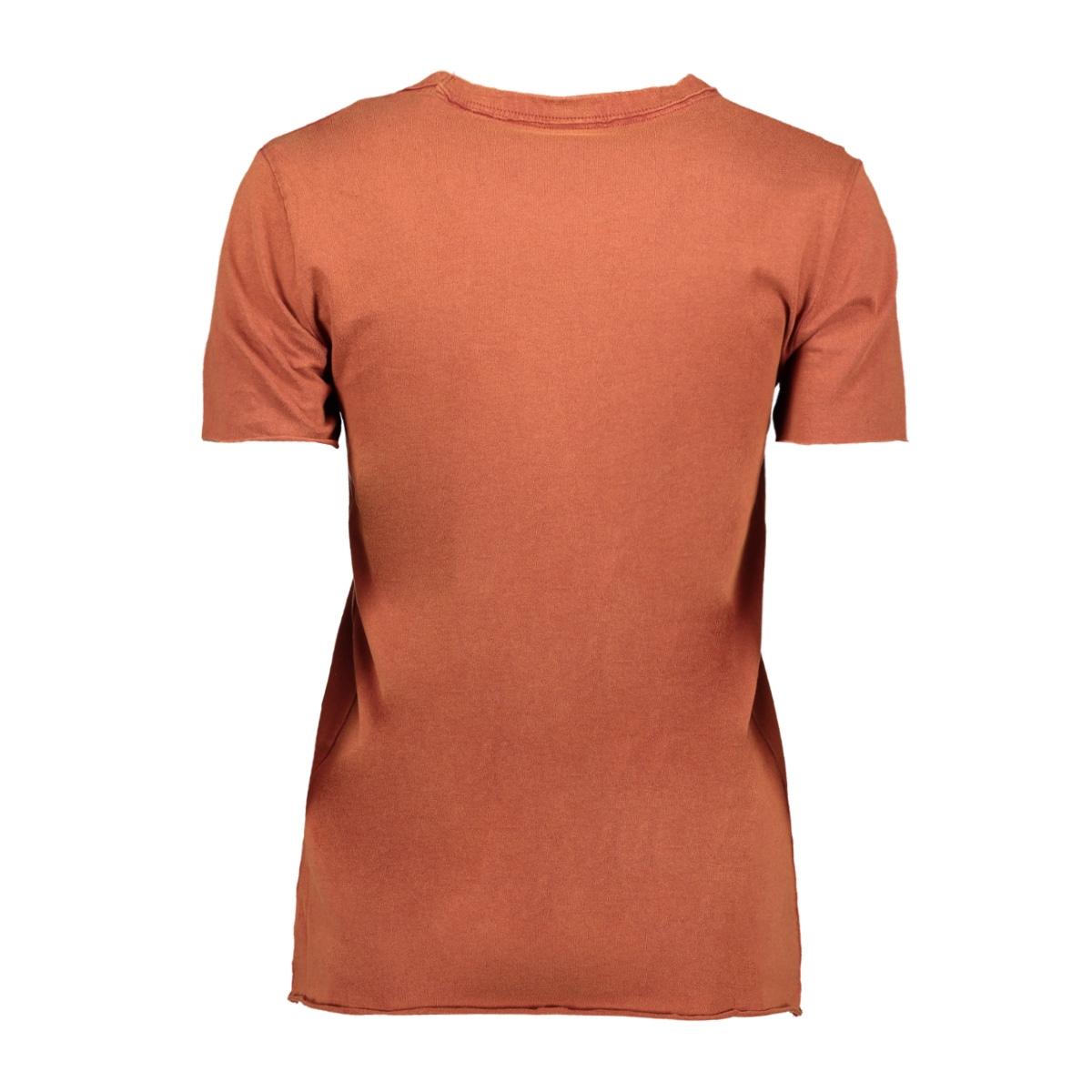 onllucy life reg s/s top cs jrs 15211712 only t-shirt burnt henna/faith