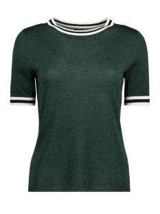 Only T-shirt onlKAMILLA 2/4 PULLOVER KNT 15140057 Pine Grove/W Matching