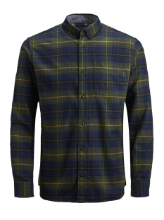 Jack & Jones Overhemd JPRKEITH CHECK SHIRT L/S 12143551 Kombu Green/SLIM FIT