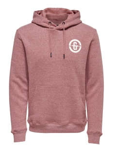 Only & Sons sweater onsORLANDO SWEAT HOODIE 22012250 Rooibos Tea