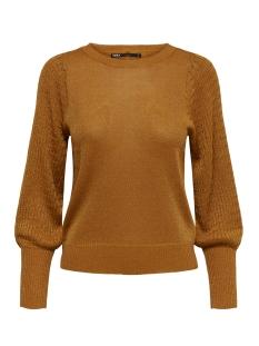Only T-shirt ONLMEGAN L/S PULLOVER CC KNT 15206747 Pumpkin Spice