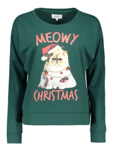 onlmerry l/s oneck swt 15126574 only sweater botanical garden/meawy