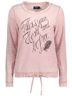 Only Sweater onlBABA L/S PRINT BOX SWT 15128598 Ash Rose/Follow You