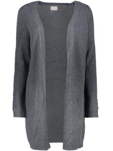 Vero Moda Vest VMRAVEN POSH LS LONG CARDIGAN 10157327 Ombre Blue