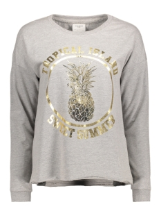 Vero Moda Sweater VMAYA KAIA LS SWEAT BOX DNM SWT 10177455 Light Grey Mela/Pinneaple